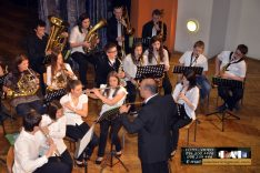 PAL-17511-245-Puhački orkestar srednje GŠ
