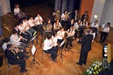 PAL-17511-231-Puhački orkestar srednje GŠ