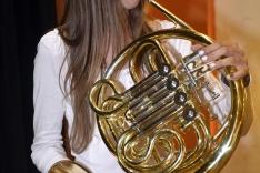 PAL-17511-240-Puhački orkestar srednje GŠ