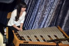 PAL-17511-244-Puhački orkestar srednje GŠ