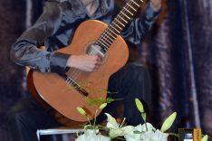 PAL-18511-285-Luka Kapitanić, gitara I. S