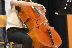 PAL-18511-262-Jelena Vedriš, violoncello III. O