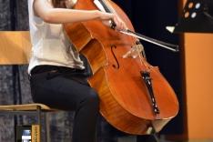 PAL-18511-263-Jelena Vedriš, violoncello III. O