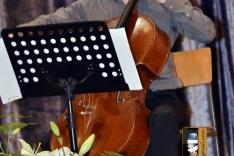 PAL-18511-289-Emanuel Pavon,violoncello I. S