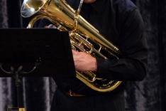 PAL-15511-017-Zlatko Strčić-eufonij