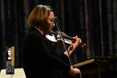 PAL-15511-041-Vanda Novoselec-violina
